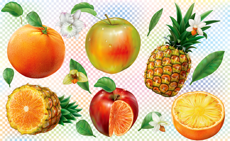 Composition fruits of pineapple with orange and apple on transparent background. Vector illustration