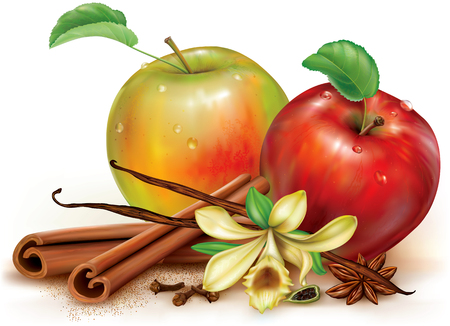 Apples and fragrant spices cinnamon vanilla anise cardamon. Vector illustration 向量圖像
