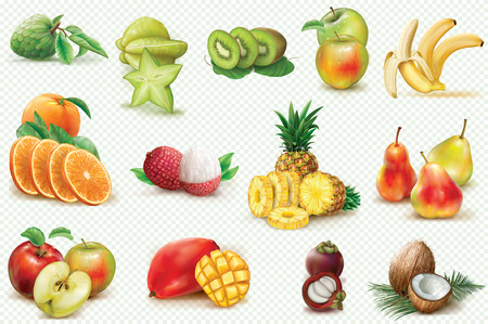 Set with colorful fruits on a transparent background. Realistic vector illustration
