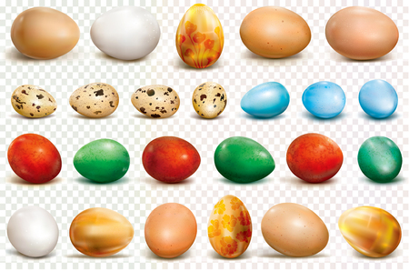 Colorful eggs on a transparent background. Vector illustration Ilustração