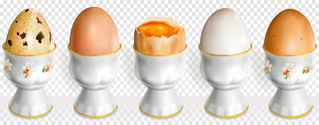 Chicken and quail raw eggs on a egg cup vector illustration.