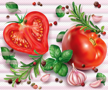 Composition with tomatoes and aromatic herbs and spices on a transparent background. Vector illustration