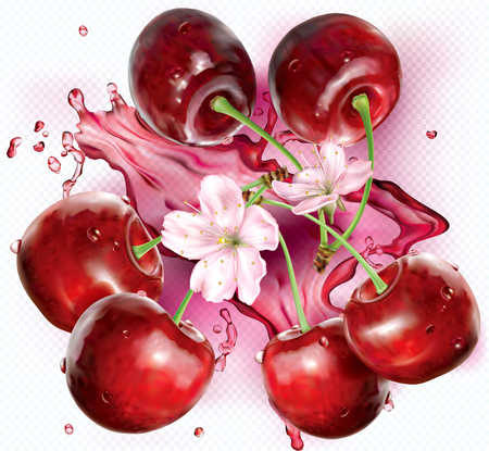 Cherries and flower on transparent background. Vector illustration