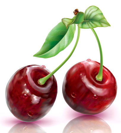 Two Cherry on a white background. Vector illustration Stock Illustratie