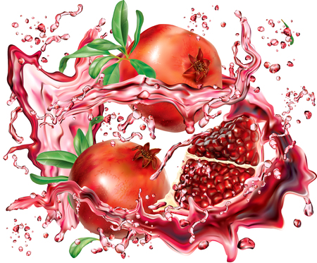 Pomegranate into of burst splashes of juices on white. Vector illustration