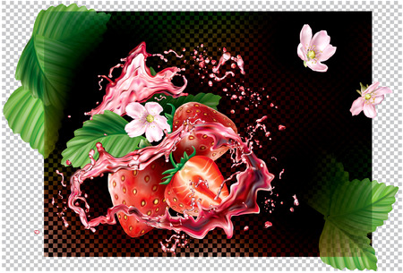 Strawberry fruits into of splashes of juice on a black transparent background. Vector packaging illustration