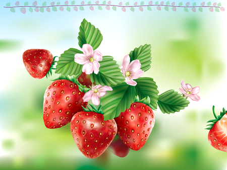 Strawberry fruits with leaves and flower on a green background. Vector illustration Ilustrace