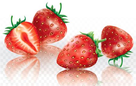 Strawberry on a white transparent background. Vector illustration Ilustrace
