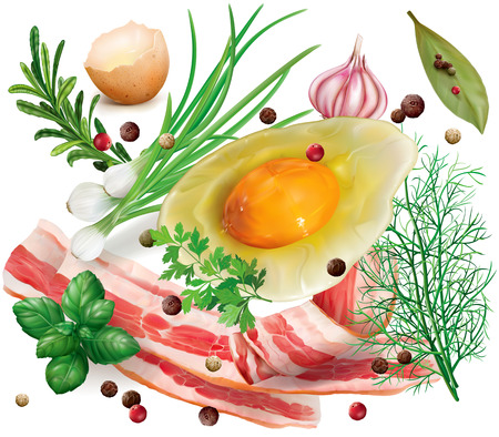 Bacon, broken egg and herb aromatic spices on a white background. Vector illustrtion Vettoriali