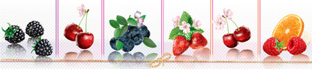 Composition with berries on a transparent background places in a horizontal line. Vector mesh illustration Banque d'images - 124902794