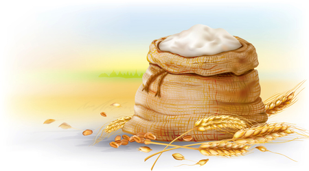 Bunch of wheat and flour in burlap bag on a rural field background. Vector mesh and curves illustration Çizim