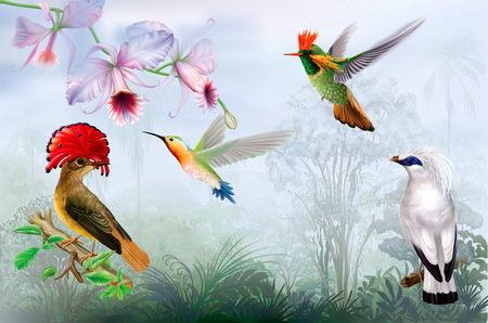 Rare exotic tropical birds and hummingbird on a rainforest background. Vector mesh and curves illustration