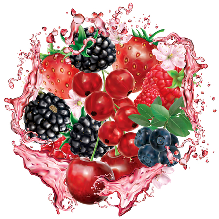 Berries mix into of burst splashes of juices. Strawberry, raspberry, cherry, blackberry, blueberry, red currant. Vector mesh illustration Banque d'images - 124902863
