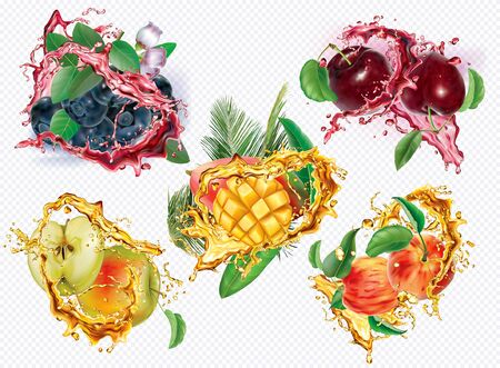 Apple, Plum, Peach, Blueberry, Mango in splashes of juice on transparent background. Vector mesh and curves illustration Stock fotó - 131720434