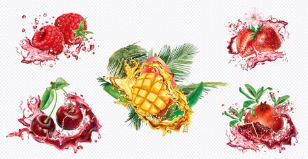 Cherry, Strawberry, Raspberry, Pomegranate and Mango in splashes of juice on transparent background. Vector mesh and curves illustration