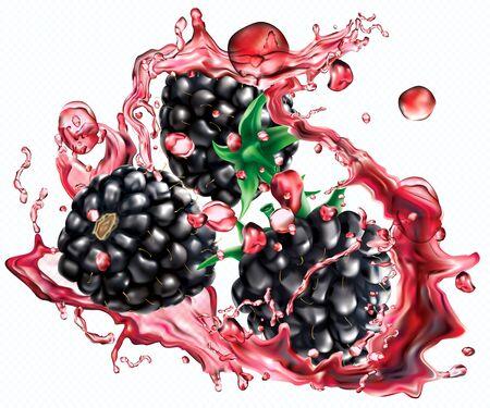 Blackberry in splashes of juice on transparent background. Vector mesh illustration
