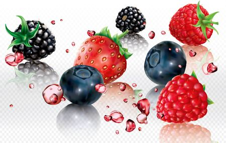 Berries mix into splashes of juices. Blueberry, Blackberry, Strawberry, Raspberry. Vector mesh illustration