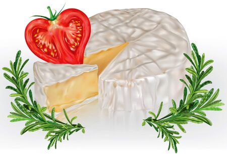 Camembert brie cheese with tomato and rosemary. Vector mesh illustration