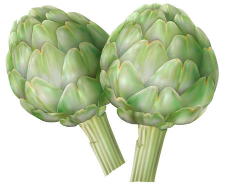 Artichoke vegetables on a white background. Vector mesh illustration