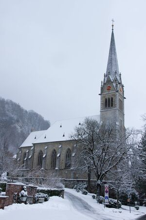 florin: A photo of the St Florin Cathedral in Vaduz, the capital city of the Principality of Liechtenstein
