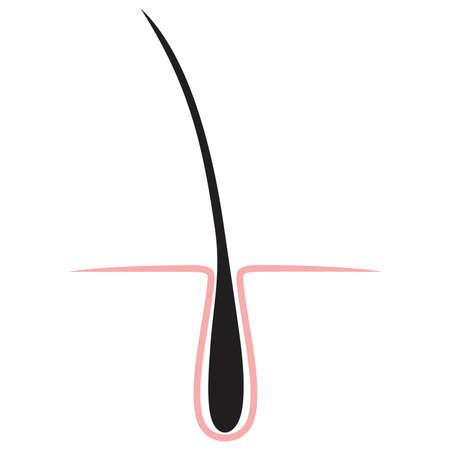 hair icon isolated. Illustration