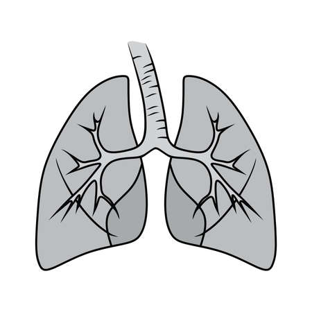 inhalation: human lungs. vector illsutration. Danger of smoking Lungs of person smoker. Illustration