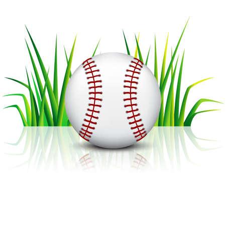 Baseball ball on green grass with reflection