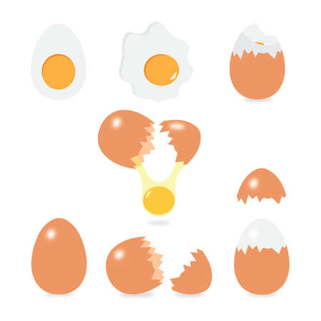 Set of eggs vector Illustration