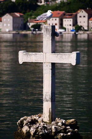 Seagull and a cross.  Photo taken early morning in the bay of Boka Kotorska, Montenegro.