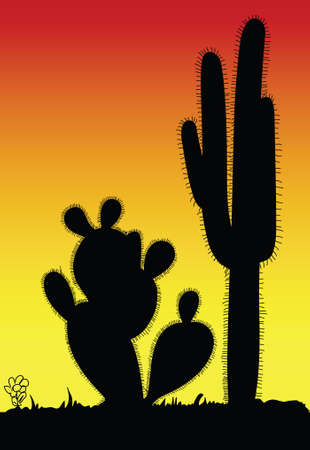 cactus prickly art black silhouette in desert illustration Illustration
