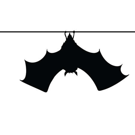 bat hanging on a rope silhouette vector Çizim