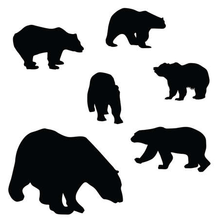 kodiak: sweet and beautiful bears silhouettes illustration on a white background