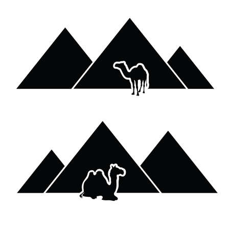 pyramid with camel vector Illustration