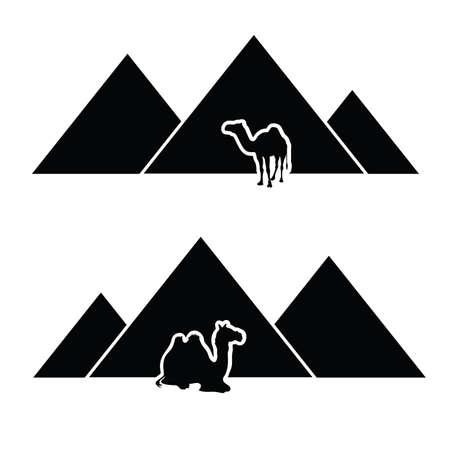pyramid with camel vector Vector