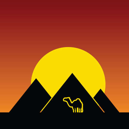 camel and pyramids color vector Vector