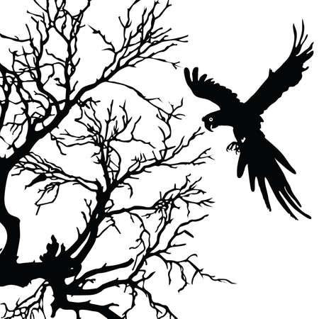 ara: ara and tree black vector silhouette illustration