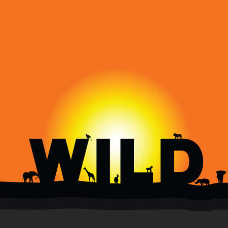 wilderness: wilderness vector in colorful with animal Illustration