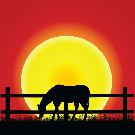 horse silhouette in nature illustration in colorful