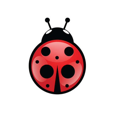 ladybug icon in red vector illustration on white