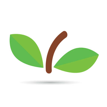 leaf with brown pedicel vector on white background Illustration