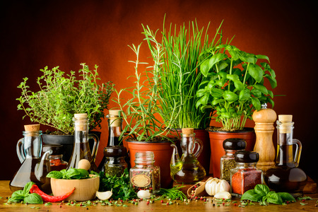 vinegar bottle: still life with mediterranean herbs, spices and bottles of olive oil