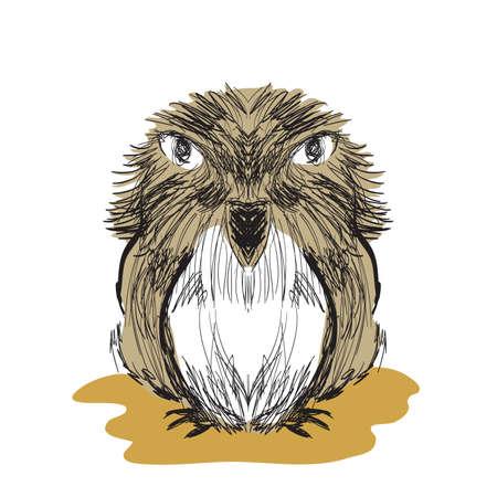 lowbrow: Illustration of hand drawn bird sketch. Clip-art, Illustration. Illustration