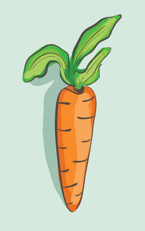 carotene: Illustration of hand drawn cartoon carrot on blue background . Clip-art, Illustration. Illustration