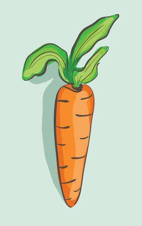 cartoon carrot: Illustration of hand drawn cartoon carrot on blue background . Clip-art, Illustration. Illustration