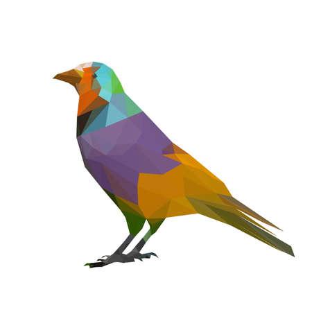 popinjay: Illustration of colorful origami bird