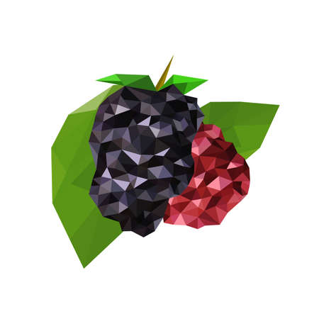 wite: Illustration of geometric polygonal raspberries isolated on wite background