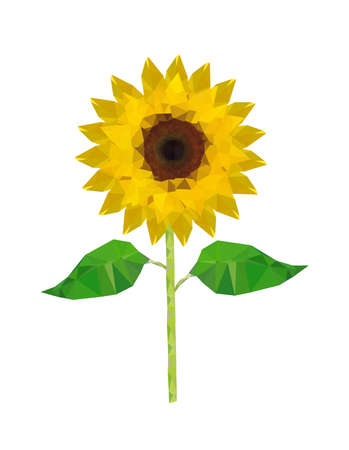 sunflower isolated: Illustration of origami sunflower isolated on white background Illustration