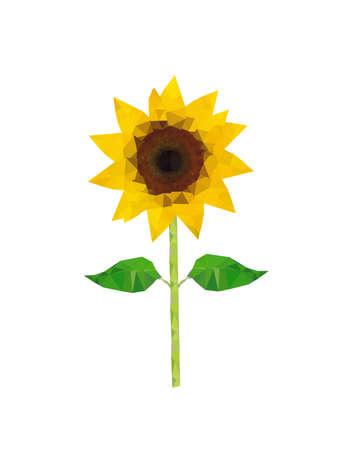 sunflower isolated: Illustration of polygonal sunflower isolated on white background