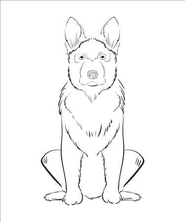 montañas caricatura: Ilustración del perro dibujado a mano aislado sobre fondo blanco