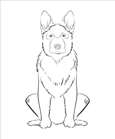 Illustration of hand drawn dog isolated on white background